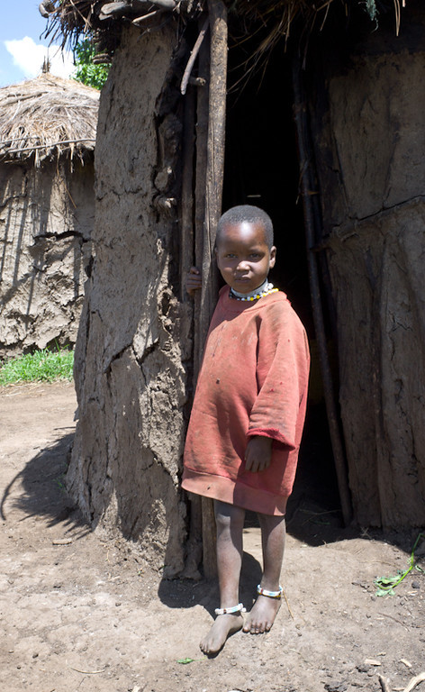 © Robert Will 2013<br /> <br /> Masai children grow up fast. Boys as young as 6 guard the family's herds while they graze in the predator rich countryside - a huge responsibility for the little boys.<br /> <br /> Few Masai children go to school, although missionary schools exist. We saw one Masai child (in school uniform) walking home more than 20 km from his school.<br /> <br /> Shadrach owes his education to the fact that his Masai grandfather gave Shadrach's mother to missionaries for their school - so that the missionaries would leave his sons alone.