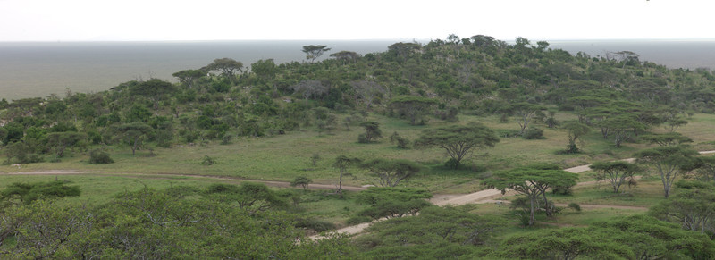 Jutting high above the Serengeti, Naabi Hill is a popular lookout spot for predators such as lions and eagles.