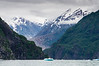 Tracy Arm View
