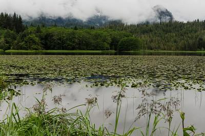 Pavlof Lake