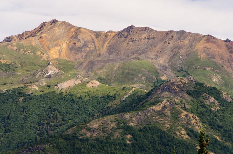 Hills near Denali Train Station
