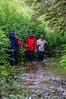 Hiking through a Stream