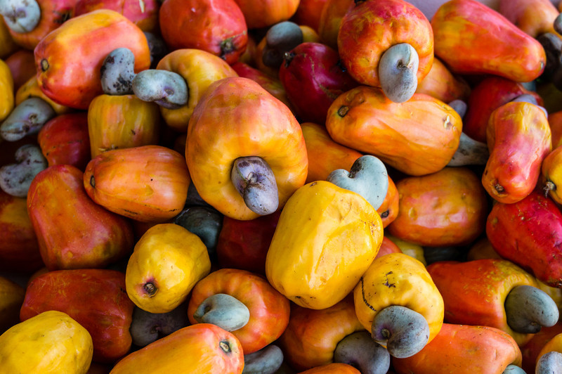 Cashew Fruits<br /> This is a bin of the fruits of the cashew tree.  The cashew nuts themselves are inside the grew part of the fruit, one nut per piece of fruit.<br /> (Gallery: Travel Journals > Costa Rica 12 > Fruits, Flowers and Interesting Plants)