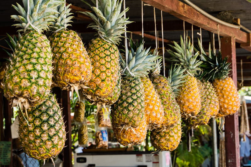 Pineapples for Sale<br /> We stopped at a small market on the way from San Jose to Monteverde.  Here is a selection of pineapple hanging up next to a small restaurant.