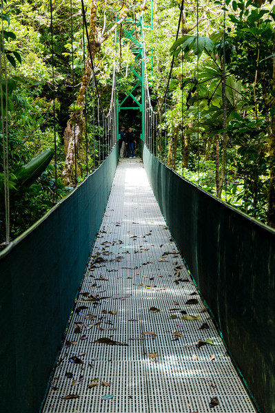 Suspension Bridge<br /> A differebt view of one of the suspension bridges on the Sky Walk in the Monteverde Cloud Forest.  At the other end if a different group of hikers, who have the right of way.