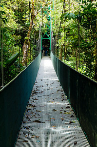 Suspension Bridge A differebt view of one of the suspension bridges on the Sky Walk in the Monteverde Cloud Forest.  At the other end if a different group of hikers, who have the right of way.