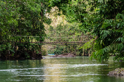 Agujitas River We took a Zodia tour down the Agujitas River in Costa Rica.  This bridge crosses the river partway upstream.