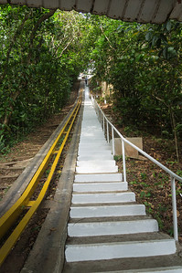 Stairs on Barro Colorado Island Barro Colorado Island, in the middle of Lake Gatun, in the panama Canal, is home to the Smithonian Tropical Research Institute.  These steps go from the shore of Barro Colorado Island  up to the higher reaches of the rfesearch institute.  The yellow rails are used for moving equipment.
