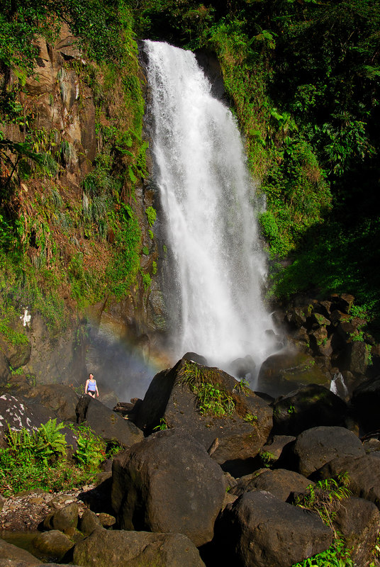 <b>Trafalgar Falls</b>   (Mar 19, 2006, 04:25pm)  <p align=left>Another picture of the lower Trafalgar Falls, with Daphne standing below a rainbow, to give the falls scale.</p>