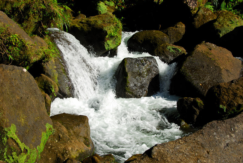 <b>Small falls in stream at Trafalgar</b>   (Mar 19, 2006, 04:03pm)  <p align=left>Below the main Trafalgar waterfall, the river runs through a boulder field.  At various spots the boulder configuration causes smaller waterfalls to form (this one is just a couple of feet tall).</p>