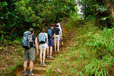Jeffrey teaches the group some botany   (Mar 21, 2006, 09:31am)  hiking time: 1 hr, 25 mins  Jeffrey, our guide, points out some of the local plants.  From left, Ben, Annie, Dave, Stephanie and Jeffrey.  The trail here is starting to get quite steep as we get closer to the highest point of the hike.