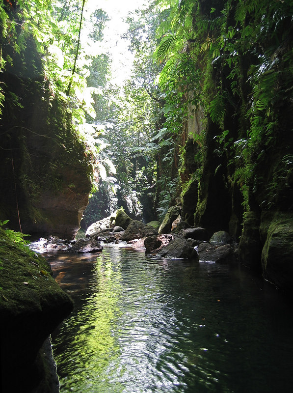 <b>Looking down the river canyon</b>   (Mar 22, 2006, 01:11pm)  <p align=left>Here is one of the calm spots on the river above Titou Gorge, looking downstream.</p>