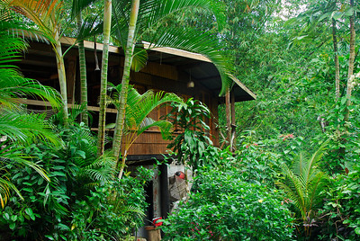 View of the second Cocoa Cottages building   (Mar 24, 2006, 06:55am)  The Cocoa Cottages, where we stayed the week, has two buildings.  This is a picture of the side of the second building.  The room at the top is one of the guest rooms.