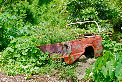 A creative planter   (Mar 24, 2006, 11:12am)  Old cars seem to dot the countryside of Dominica almost as often as banana fields.