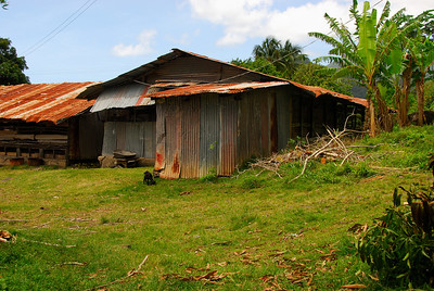 Farm buildings   (Mar 24, 2006, 11:22am)  This buildings, on a farm that we visited in Southeastern Dominica, house goats and chickens.