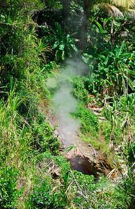 Steam rising from a hole in ground   (Mar 25, 2006, 01:39pm)  Although there is no active volcano on Dominica, there is a lot of underground activity.  For example, there is the boiling lake (see the second gallery), Champagne Reef (see the first gallery) and lots of hot springs.  There are also places, like this picture, where steam just rises from the ground.