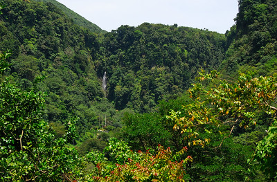 Trafalgar Falls in distance   (Mar 25, 2006, 01:10pm)  In the afternoon, we hiked up to road to Trafalgar.  Here is a vista that shows Tragalgar Falls in the distance.  (There are some pictures of the falls in the first Dominica gallery.)