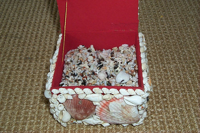 Shell Box To Hold Shells   (Apr 15, 2000, 05:33pm)
