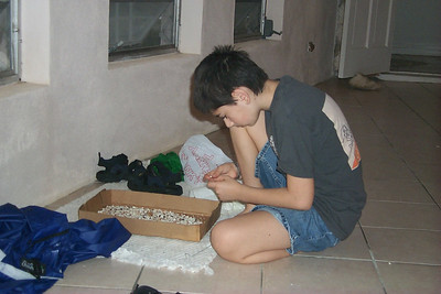 Ben Sorts Through Shells   (Apr 16, 2000, 07:33am)