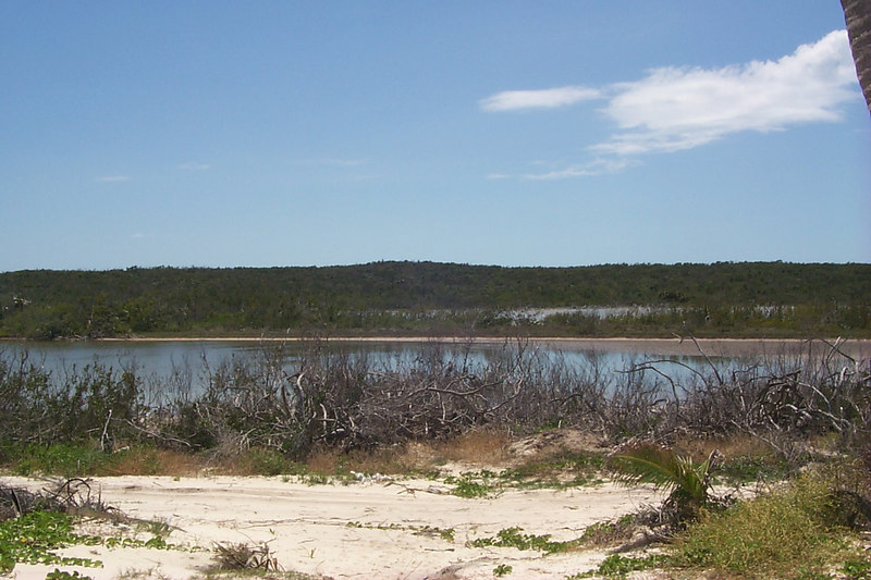 <b>Smelly Lake behind Double Bay Beach</b>   (Apr 18, 2000, 02:11pm)