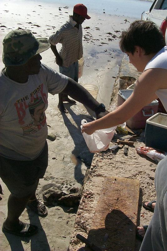 <b>Daphne Collects the Fresh Fish</b>   (Apr 18, 2000, 04:51pm)