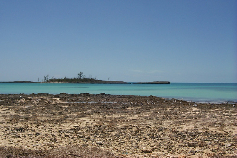 <b>Island off of Cupids Cay</b>   (Apr 19, 2000, 12:40pm)