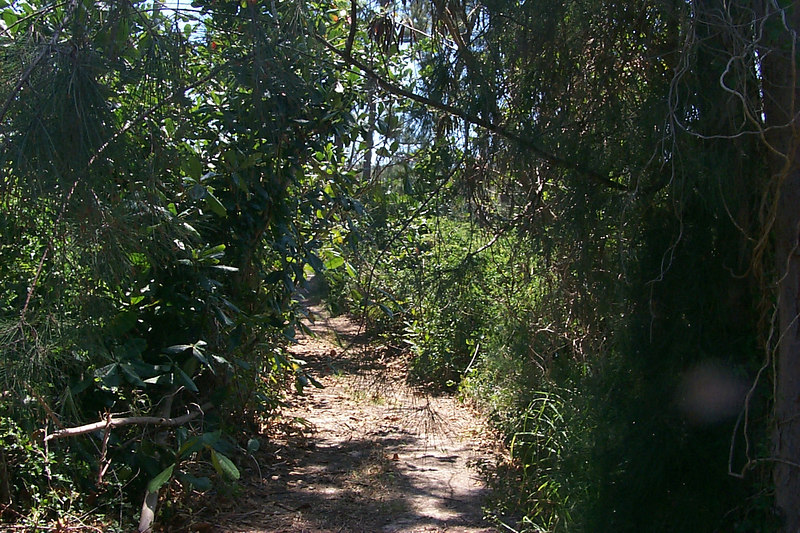 <b>Path To Club Med Beach</b>   (Apr 19, 2000, 02:23pm)