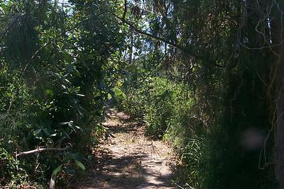 Path To Club Med Beach   (Apr 19, 2000, 02:23pm)