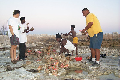 Preparing Conch for Dinner   (Apr 20, 2000, 07:33pm)