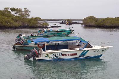 Boats in Puerto Villamil harbour   (Dec 10, 2005, 01:18pm)