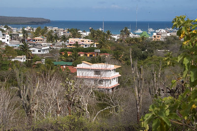 View of Puerto Ayora   (Dec 09, 2005, 03:32pm)