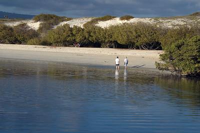 Walking the beach of lagoon near Tortuga Bay   (Dec 09, 2005, 04:58pm)