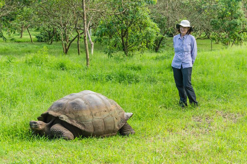 Karen and a Giant Tortoise