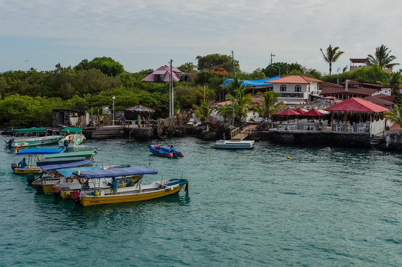 Academy Bay, Santa Cruz Island