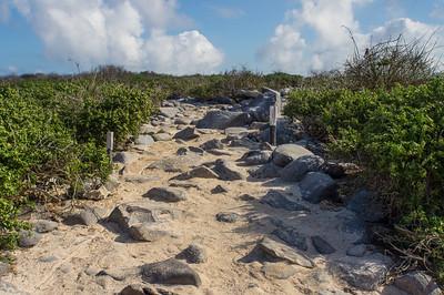 Path on Española Island