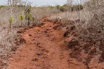 Path on Rábida Island