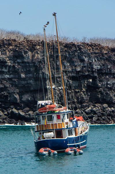 Boat in Darwin Bay