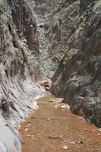 Clear Creek Walls   (Jun 01, 1999, 01:41pm)