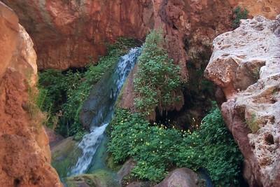Up Falls Elves Chasm   (Jun 04, 1999, 10:45am)