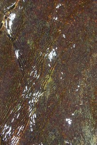 Water over Colored Rock   (Jun 07, 1999, 02:47pm)