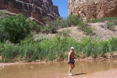 Daphne up Kanab   (Jun 07, 1999, 11:27am)