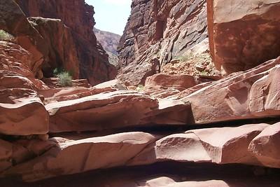 North Canyon Ledge   (May 27, 1999, 12:10pm)