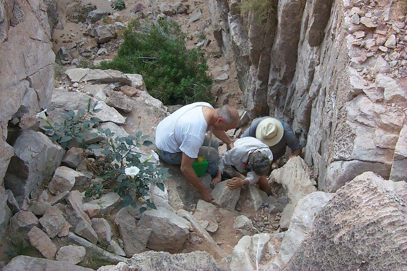 <b>Climbing South Canyon</b>   (May 28, 1999, 08:36am)