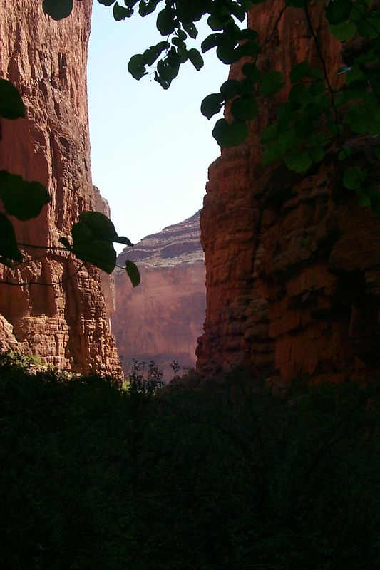 <b>Saddle Canyon</b>   (May 29, 1999, 10:21am)