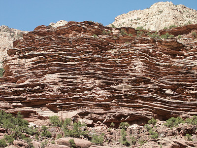 Close up of rock formation in Canyon of Lodore   (Jun 27, 2003, 04:07pm)