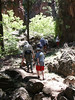 <b>Rippling Brook hike</b>   (Jun 27, 2003, 02:44pm)