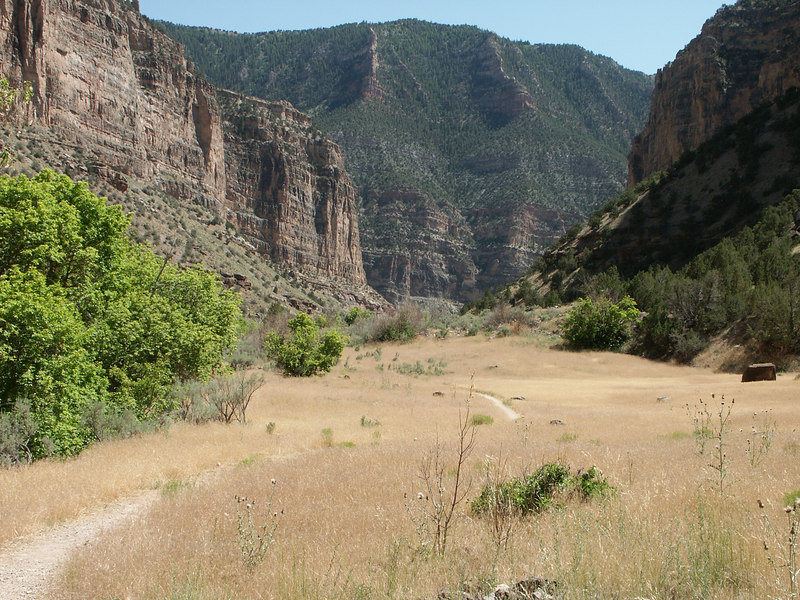 <b>The trail in Jones Hole canyon</b>   (Jun 28, 2003, 03:34pm)