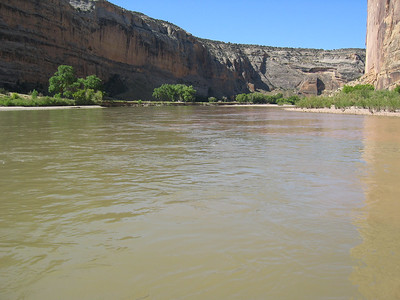 Mixed green and brown water at the confluence   (Jun 28, 2003, 10:03am)