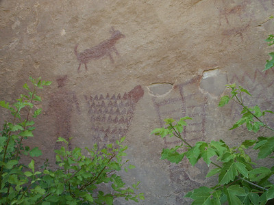 More pictographs in Jones Hole   (Jun 28, 2003, 02:34pm)
