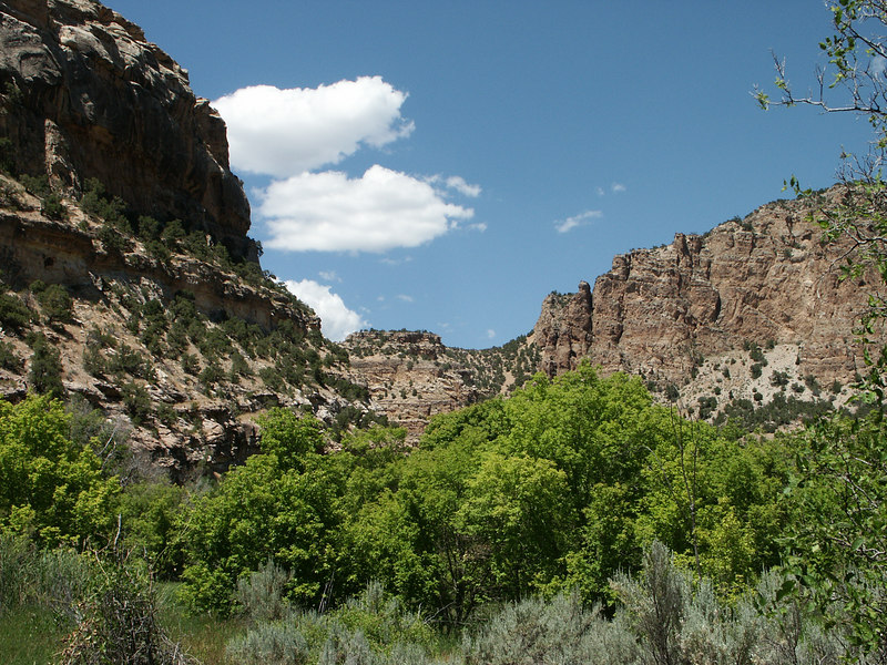 <b>View further up Jones Hole canyon</b>   (Jun 28, 2003, 02:46pm)